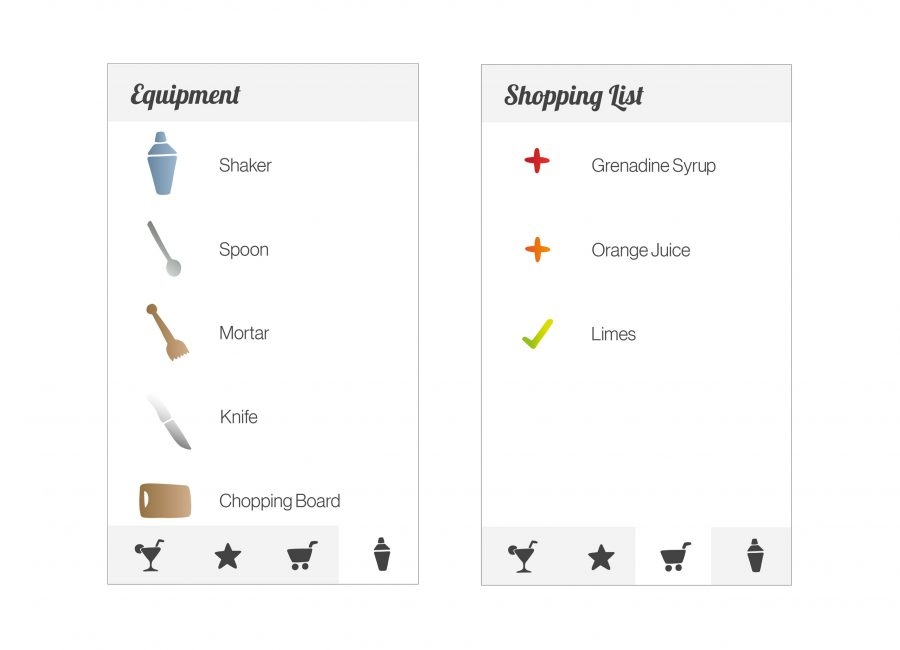 Lisa Kamysz App Shopping List and Equipment
