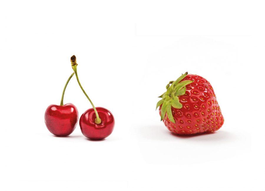 Olga Rogozhyna Website Food Photography